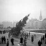 Julgranen reses. Foto: Lennart af Petersens. Stockholms Stadsmuseum. CC: By, Nc, Sa